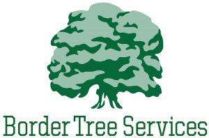 Border Tree Services Logo